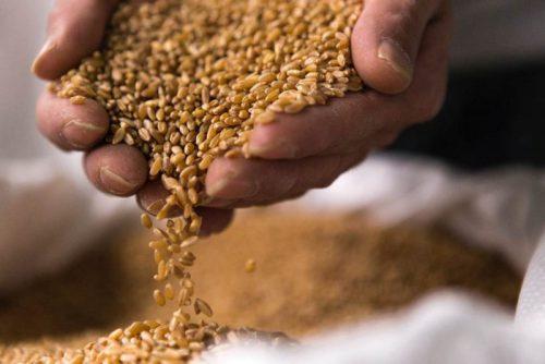 pane grani antichi