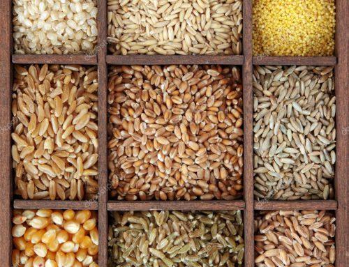 Consigli per cucinare i cereali in estate