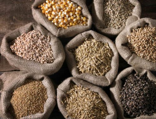 Mangiare i cereali integrali per perdere peso
