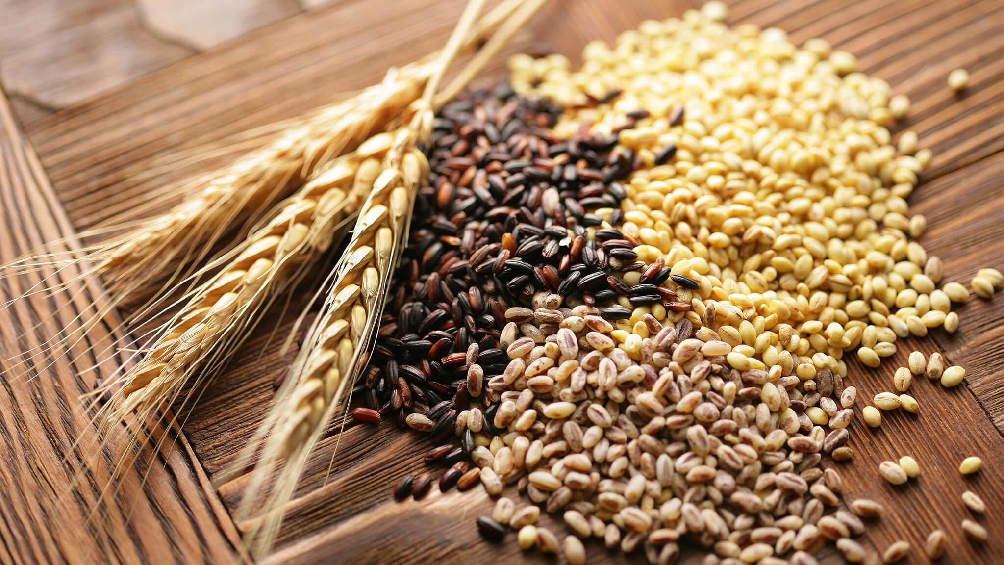 cereali integrali azienda agricola le barbarighe